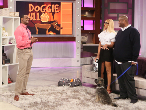 Doggie 411 with Tamar, Vince and Miracle