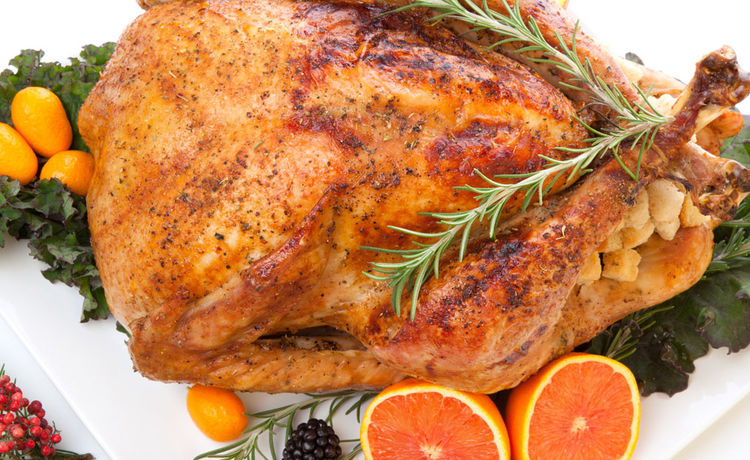 Saltwater & Orange Slice Turkey