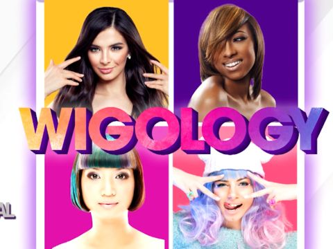 Part 1 - Everything You Need to Know About WIGS!