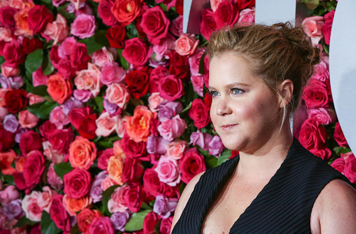 Amy Schumer Gives Birth to Her 'Royal Baby'