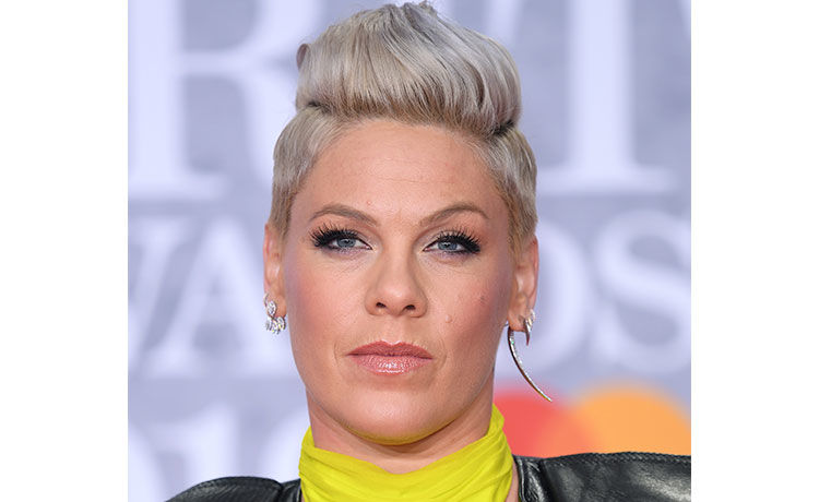 Pink Proposes This One-Day Internet Challenge