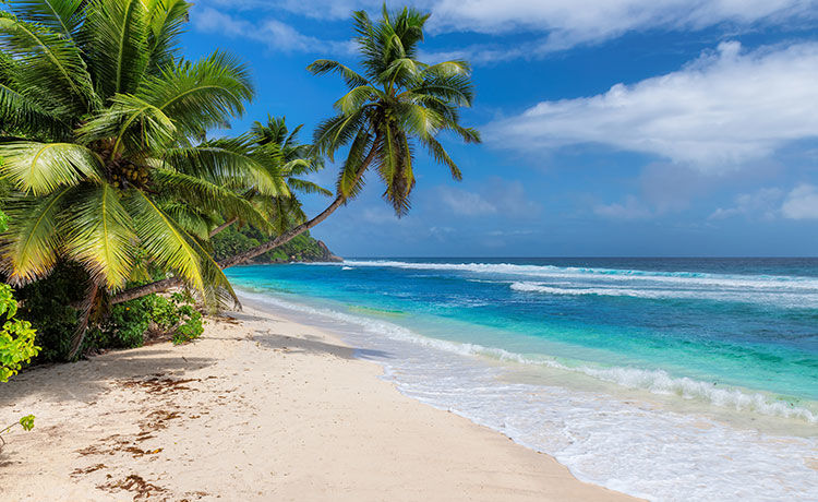 Hawaii Is Offering FREE Flights to Temporary Residents!