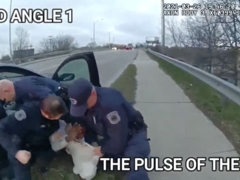 Michigan Cop Repeatedly Punches Black Man at Traffic Stop Over Littering